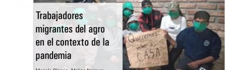 [Serie El trabajo en los tiempos de la COVID-19] Trabajadores migrantes del agro en el contexto de la pandemia