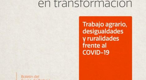 [Artículo] Entre la vulnerabilidad laboral y el impacto de la pandemia. El empleo temporario agrícola frente al Covid-19 en la Argentina / Guillermo Neiman